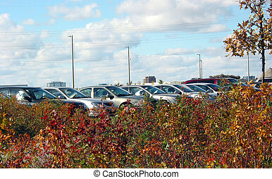 coches, terreno, estacionamiento