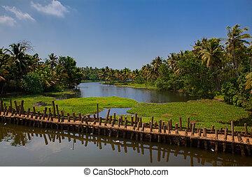 cochin, backwaters