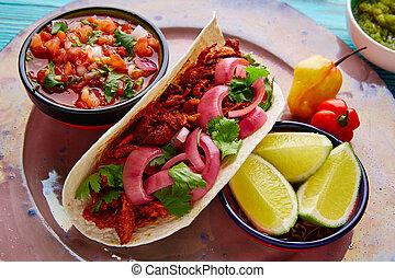 Cochinita Pibil Mexican food with pico de gallo