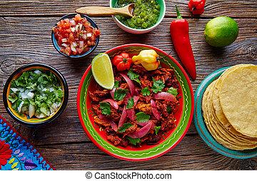 Cochinita Pibil Mexican platillo food with red onion