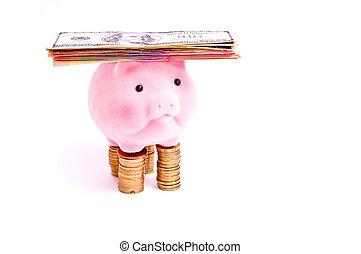 cochon, à, argent