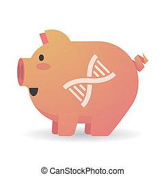 cochon, adn, dessin animé, signe