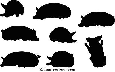 cochon, silhouette