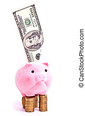 cochon, sur, argent