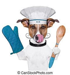 cocinero, chef, perro