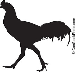 Cock Chicken silhouette vector