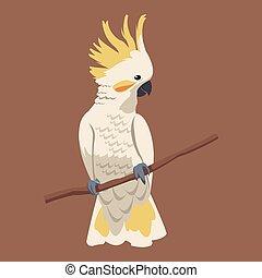 cockatoo bird exotic branch vector illustration eps 10