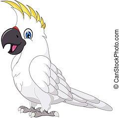 cockatoo, caricatura, posar