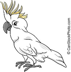 Cartoon Illustration of Funny Cockatoo Parrot Bird