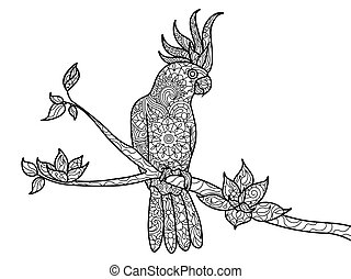 Cockatoo parrot coloring book for adults vector - Cockatoo...