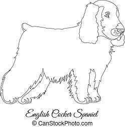Cocker spaniel dog outline