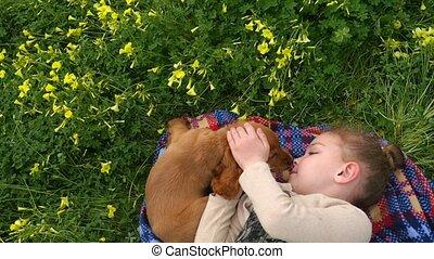 Cocker spaniel puppy licking pretty girl's face