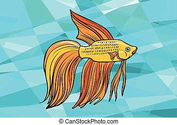 cockerel, aquário, peixe