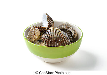 cockle in cup