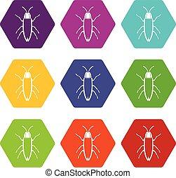 Cockroach icon set color hexahedron