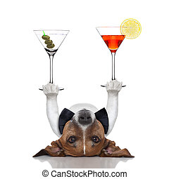 cocktail dog