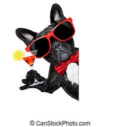 cocktail party dog - french bulldog dog holding martini...