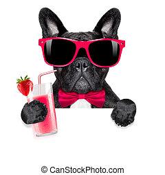 cocktail, smoothie, chien