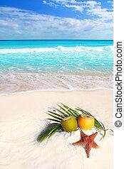 cocktails, noix coco, etoile mer, exotique, jus, plage