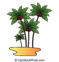 coco, árvores, areia, palma, fundo, praia branca