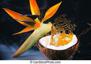 coco, aceite, (marijuana, int, encima, fragmentos, concentrate), tropical, cannabis, flor, plano de fondo, mitad, él