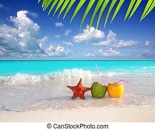 coco, cócteles, jugo, y, estrellas de mar, en, playa...