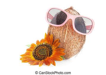 coco, conceito, óculos de sol, girassol, isolado, fundo,...