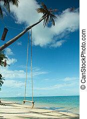 coco, cuelgue desde lo alto, columpio, árbol, isla, playa