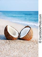 coco, dos, contra, halfs, mar de la arena, playa