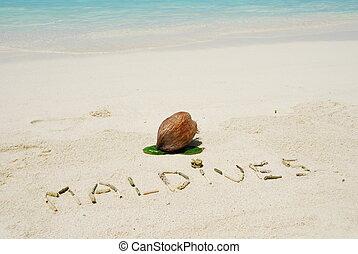 coco, maldives, tropicais, escrito, fruta, praia, arenoso