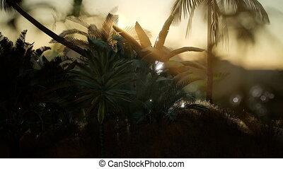 Coco palm trees tropical landscape