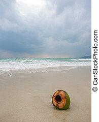 coco, praia