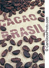 Cocoa beans and hessian