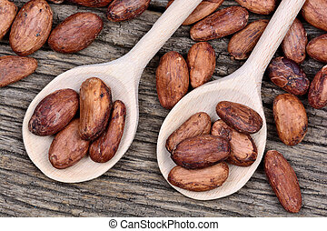 Cocoa beans in a wooden spoons on table