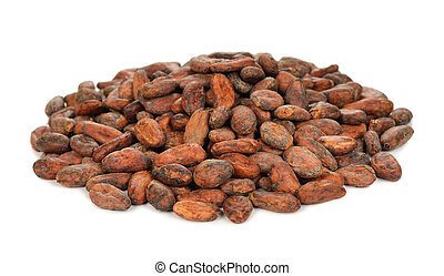 Cocoa beans on a white background