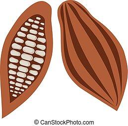 Cocoa Beans - vector cocoa beans