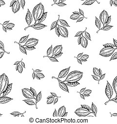 Cocoa branch vector seamless pattern. Superfood drawing....