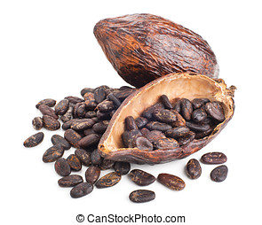 cocoa pod and beans isolated on a white background