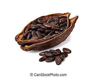 Cocoa pod - Cocoa Pod And Beans isolated on white background