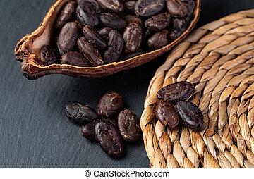 Cocoa pod - Cocoa Pod And Beans