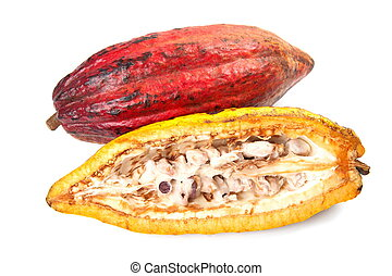 Cocoa - raw fruit to making chocolate