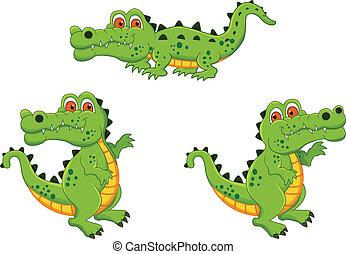 cocodrilo, caricatura, caracteres