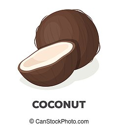Coconat.Different kinds of nuts single icon in cartoon style vector symbol stock illustration.