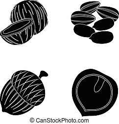 Coconut, acorn, sunflower seeds, manchueian walnut.Different kinds of nuts set collection icons in black style vector symbol stock illustration web.