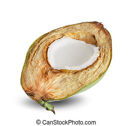Coconut an isolated on white background.