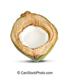 Coconut an isolated on white background