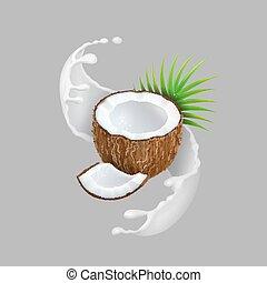 Coconut and milk splash. Natural fruit Realistic vector...