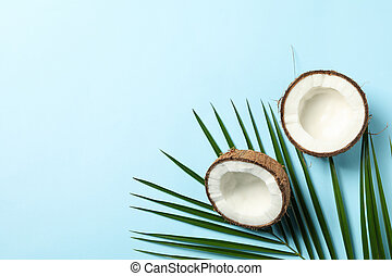 Coconut and palm branch on blue background, top view