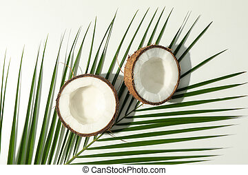 Coconut and palm branch on white background, top view