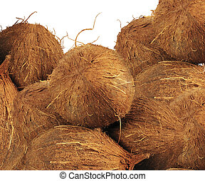 Coconut background texture